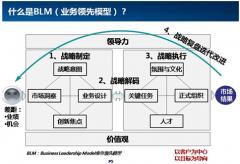 谢宁基于BLM业务领先的战略制定和战略解码课题大纲